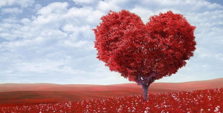 A tökéletes Valentin nap